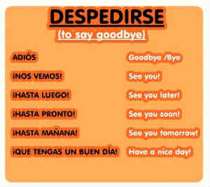goodbye in Spanish