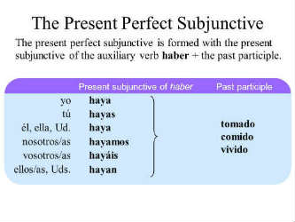 present perfect subjunctive